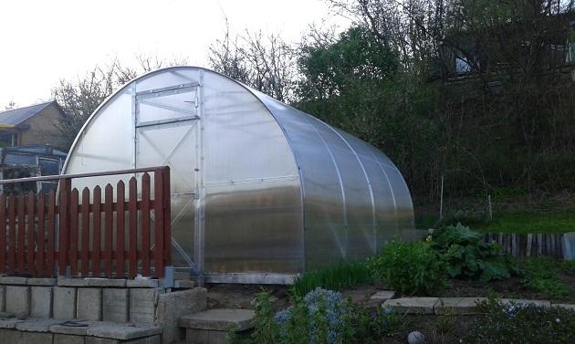 uprawa warzyw w szklarni trioszka