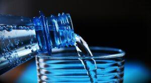Naturalny filtr do wody