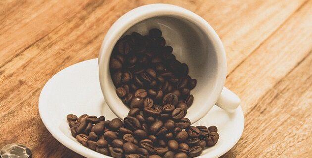 Jakie marki kawy możemy kupić w warszawskich hurtowniach online?